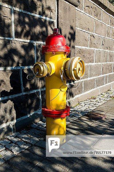 Fire hydrant iceland  Reykjavik.