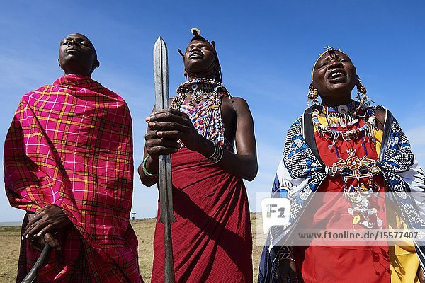 Group of Massai men and women singing and dancing  Masai Mara National Reserve  Kenya.