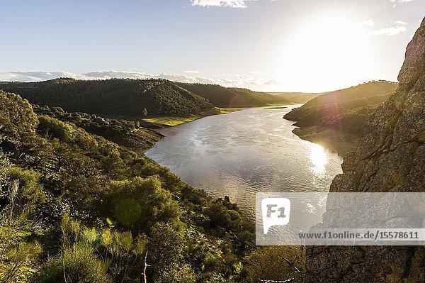 View from 'Salto del Gitano'of 'José María de Oriol' dam in Tajo river  Monfragüe National Park (Cáceres Province  Extremadura Region  Spain)