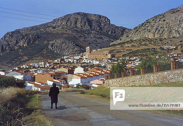 Overview. Hornachos  Badajoz province  Extremadura  Spain.