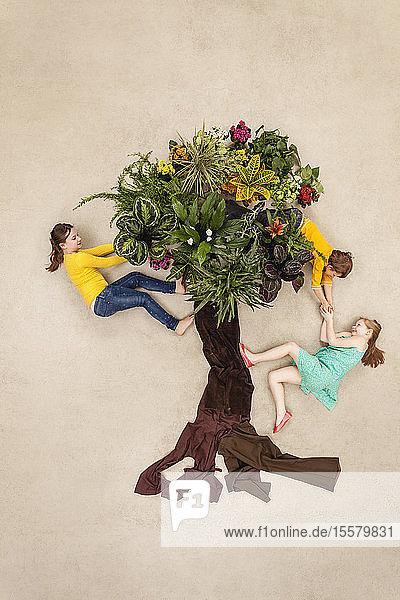 Kinder im Park klettern im Baum