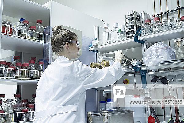 Im Labor arbeitender Biologe