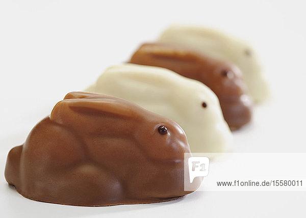 Reihe von Schokoladenosterhasen auf weißem Hintergrund