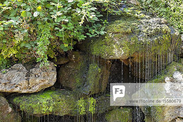 Deutschland  Niedersachsen  Harz  Quellwasser aus Fels