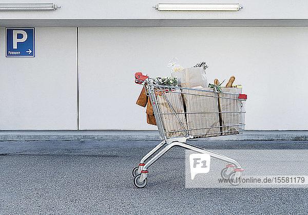 Deutschland,  Einkaufswagen mit Lebensmitteln