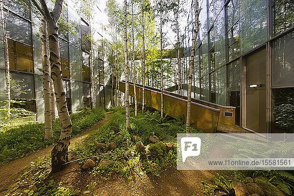 Deutschland  Hannover  Begrünung  Bäume und Brücke im Innenhof eines Bürogebäudes