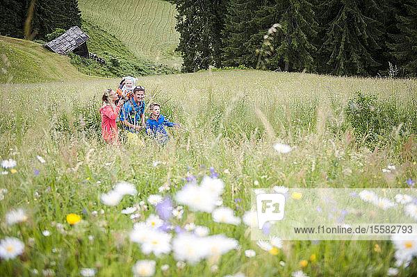 Familienwanderung auf der Blumenwiese