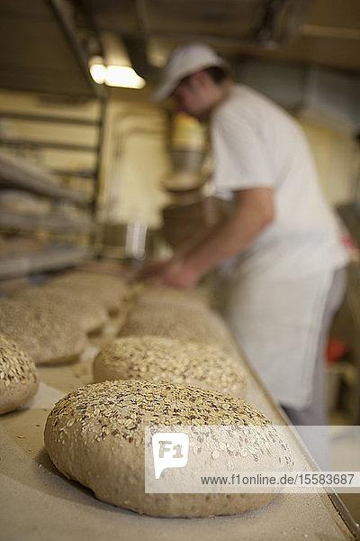 Germany  Bavaria  Munich  Baker putting bread loaf in baking tray