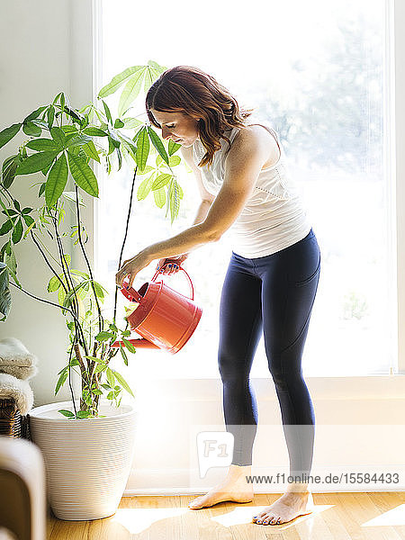 Mid adult woman watering potted plant