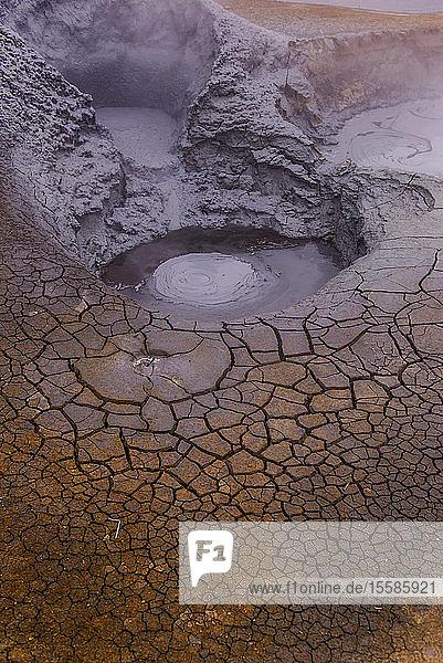 Detail der geothermischen Landschaft  Namaskard hverir  Myvatn  Island