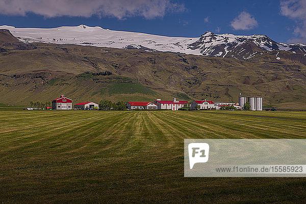 Landschaft mit entfernter H�userzeile und Eiskappe  Eyjafjallajökull  Island