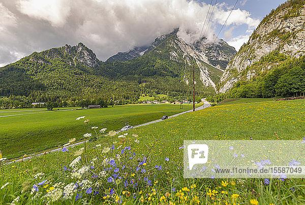 View of road leading into mountains  Unterburg  Styria  Tyrol  Austrian Alps  Austria