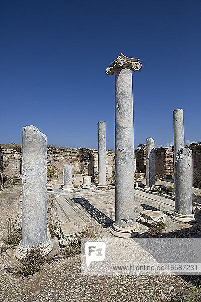 Lake House  Delos Island  UNESCO World Heritage Site  Cyclades Group  Greek Islands  Greece