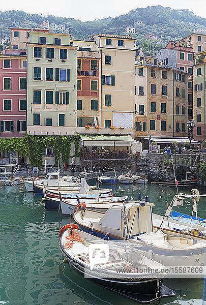 Camogli fishing port  Camogli  Riviera di Levante  Liguria  Italy