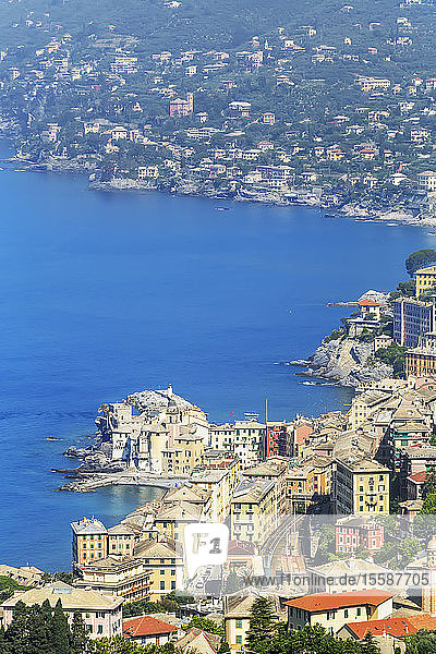 Elevated view of Camogli and Gulf of Paradise,  Camogli,  Riviera di Levante,  Liguria,  Italy
