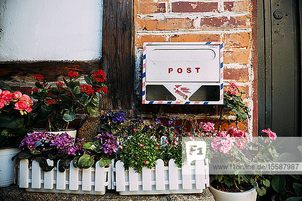 Mailbox  flower boxes and potted plants in front of a house  Seoul  South Korea.