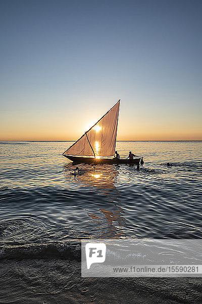Dhow on the Indian Ocean at sunset; Zanzibar City  Unguja Island  Zanzibar  Tanzania