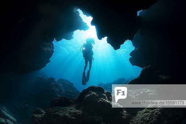 Diver entering a crevice at Yap Cavern's off the very south end of the island of Yap; Yap  Micronesia