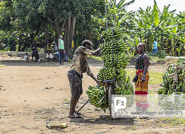 Banana vendors by the roadside; Kadindimo  Western Region  Uganda