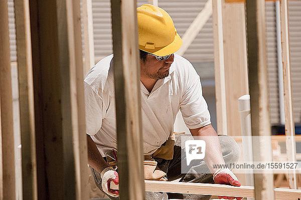 Carpenter placing wall studs