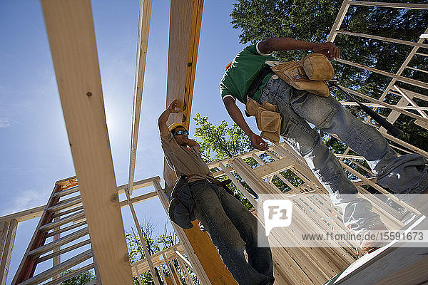 Carpenters lifting laminated beam