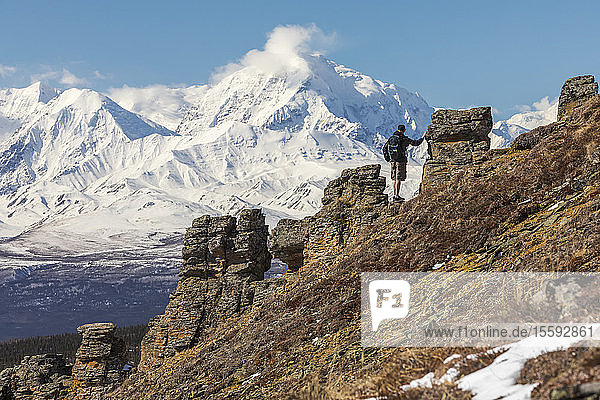 A hiker takes in the view of Mount Moffit and the Alaska Range while ascending Donnelly Dome; Alaska  United States of America