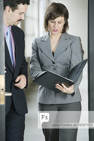 Businessman and a businesswoman examining a document