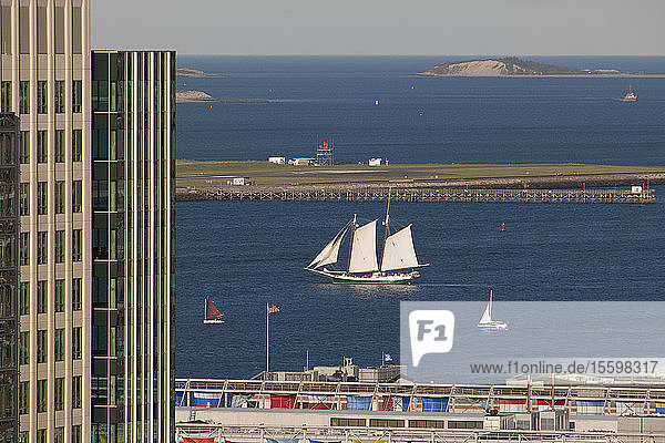 Buildings at a harbor with boats in the background  Boston  Massachusetts  USA