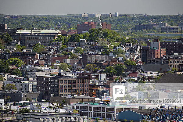 Buildings in a city  Boston  Massachusetts  USA
