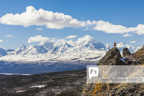 A hiker stands atop a rock outcropping on Donnelly Dome while taking in the view of Mount Moffit and the Alaska Range; Alaska  United States of America