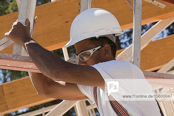 Carpenter carrying a ladder
