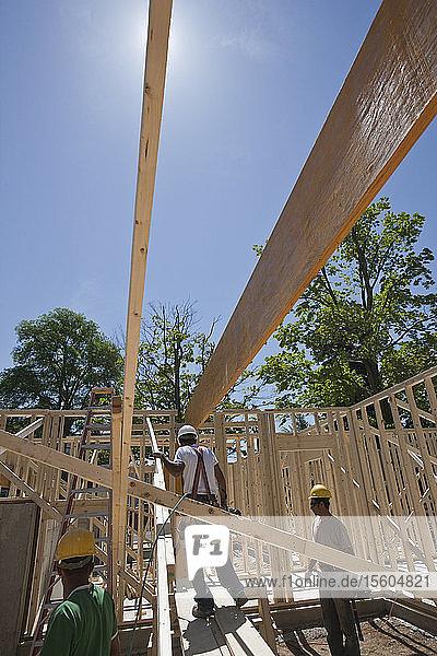 Carpenters framing a house