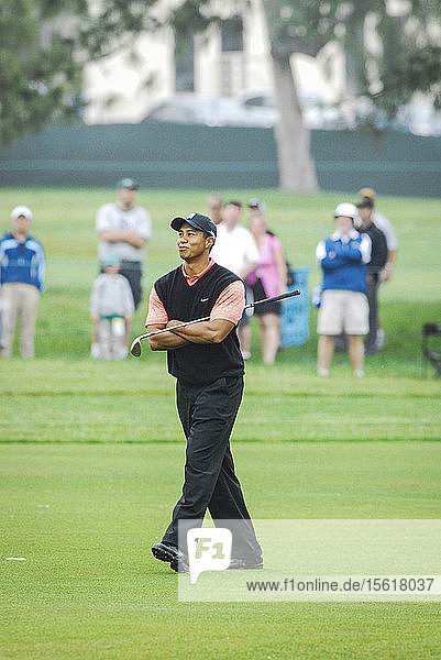 Tiger Woods walks up the fairway during the U.S. Open at Torrey Pines in San Diego  CA.