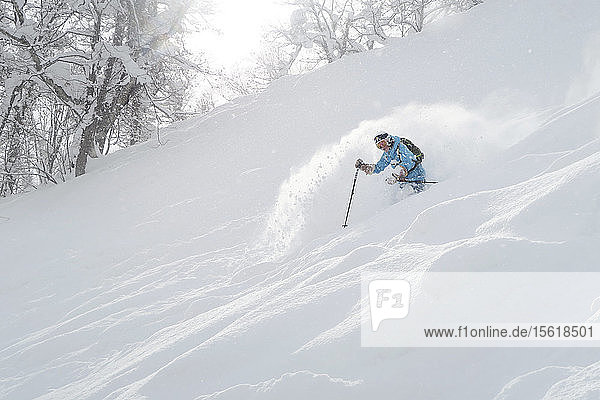 A female freerider is skiing down a slope with deep powder snow in the ski resort Niseko United on the Japanese island of Hokkaido. Niseko United is comprised of four resorts on the one mountain  Annupuri (1 308m). 100km south of Sapporo  Niseko Annupuri is a part of the Niseko-Shakotan-Otaru Kaigan Quasi-National Park and is the most eastern park of the Niseko Volcanic Group. Hokkaido  the north island of Japan  is geographically ideally located in the path of consistent weather systems that bring the cold air across the Sea of Japan from Siberia. This results in many of the resorts being absolutely dumped with powder that is renowned for being incredibly dry. Some of the Hokkaido ski resorts receive an amazing average of 14-18 meters of snowfall annually. Niseko is the powder capital of the world and as such is the most popular international ski destination in Japan. It offers an unforgettable experience for all levels of skier and snowboarder.