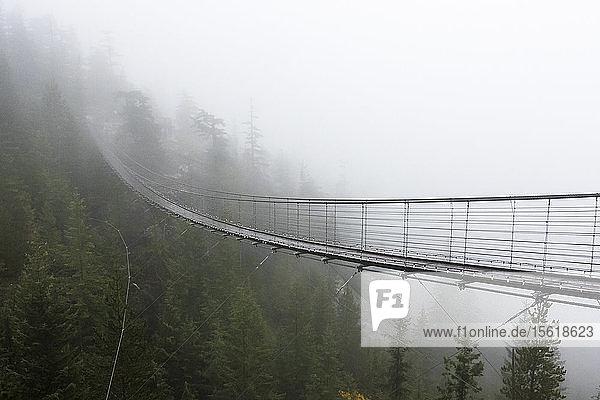 A Misty suspension bridge  Squamish  British Columbia.