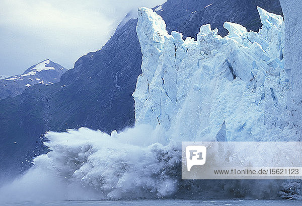 USA  Alaska  Glacier Bay National Park  Massive icebergs calve from face of Margerie Glacier in Tarr Inlet