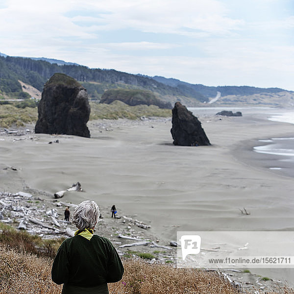 Rear view of a woman looking down on a beach in Oregon  USA.