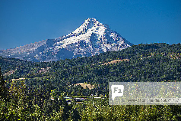 A view of Mt. Hood on a sunny day from Hood River  Oregon