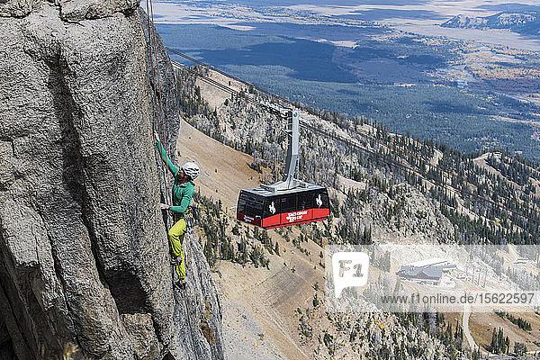 Female climber climbing rock face with mountains and Jackson Hole gondola in background  Jackson Hole  Wyoming  USA