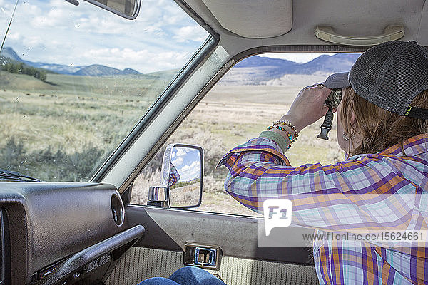 A woman spots bison from her car in Yellowstone.