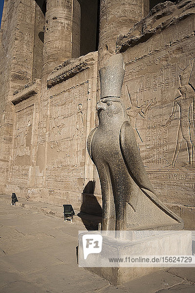 Statue Of The God Horus As A Falcon In Edfu Temple  Egypt