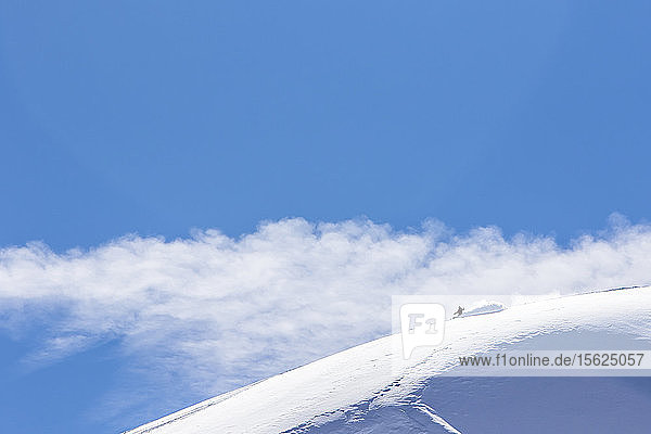 Professional Snowboarder Helen Schettini  rides fresh powder on a sunny day while snowboarding in Haines  Alaska.