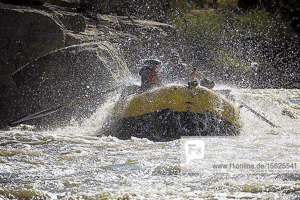 Men and women rafting on rushing Green River in Desolation Canyon  Utah  USA