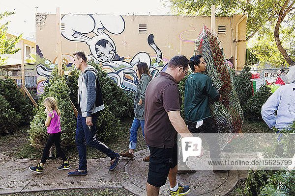 General atmosphere in neighborhoods around San Diego on Dec. 12  2015.