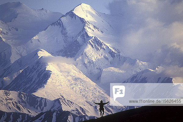 USA  Alaska  Denali National Park (MR) Hiker Evan Steinhauser hikes front of Mount McKinley at sunset