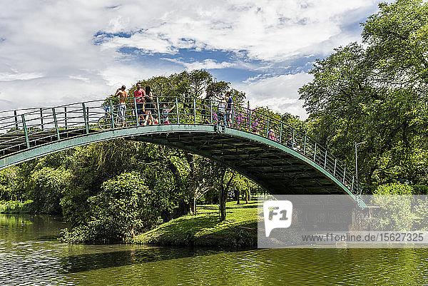 Parque Ibirapuera (Ibirapuera-Park) im Zentrum von S?ï¾£o Paulo  Brasilien