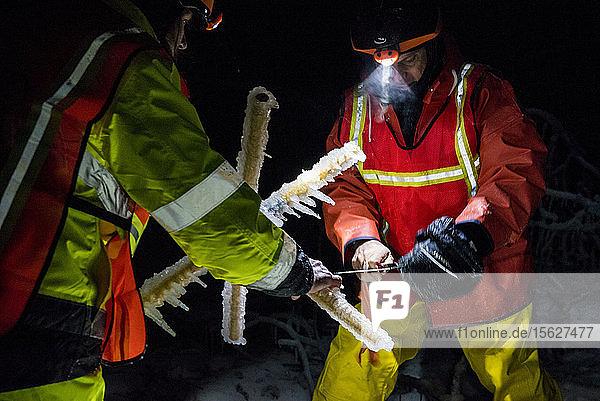 Ein Forscherteam stellt einen Eissturm während des Winters in den White Mountains von New Hampshire nach. Das Team untersucht die Auswirkungen von Eisstürmen auf Böden  Bäume  Vögel und Insekten.