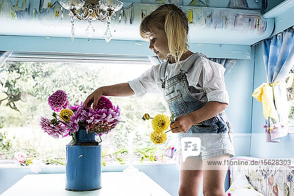 Blondes Mädchen steht an einem Tisch in einem blauen Wohnwagen und steckt rosa Dahlien in eine blaue Vase.
