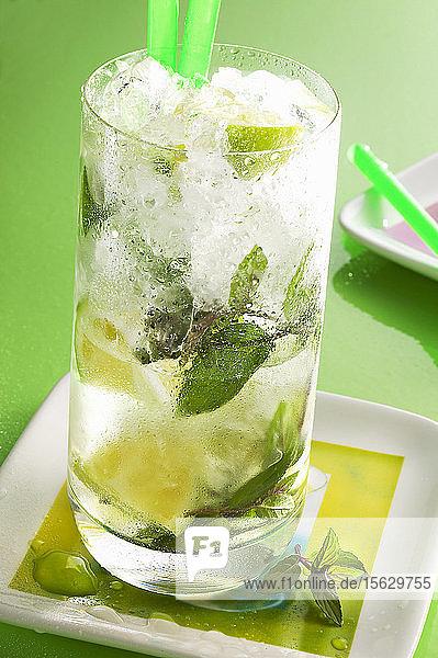 Longdrink Mojito mit weissem Rum