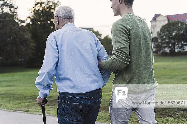 Rückenansicht eines jungen Mannes  der seinem Großvater beim Spazierengehen im Park hilft